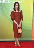 Abigail Spencer Photo - 02 May 2018 - Universal City California - Abigail Spencer 2018 NBCUniversal Summer Press Day held at Universal Studios Photo Credit Birdie ThompsonAdMedia