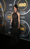 Annabeth Gish Photo - 22 September 2019 - West Hollywood California - Annabeth Gish the 2019 HBO Post Emmy Award Reception held at Pacific Design Center Photo Credit FSadouAdMedia