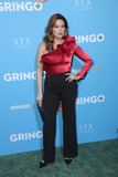 Alicia Machado Photo - 06 March 2018 - Los Angeles California - Alicia Machado Premiere Of Amazon Studios And STX Films Gringo held at Regal LA Live Stadium 14  Photo Credit PMAAdMedia