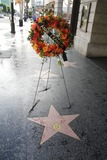 Anne Francis Photo - Anne Francis Star to commemorate her passing today Hollywood Walk of Fame Hollywood CA 01-03-2011