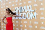 Daniella Alonso Photo - Daniella Alonsoat the Animal Kingdom Premiere Screening The Rose Room Venice Beach CA 06-08-16