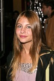 Willa Holland Photo 3