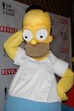 Homer Simpson Photo 3