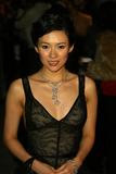 Ziyi Zhang Photo 3