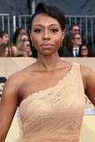 Amanda Warren Photo - LOS ANGELES - JAN 21  Amanda Warren at the 24th Screen Actors Guild Awards at Shrine Auditorium on January 21 2018 in Los Angeles CA