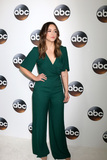 Chloe Bennet Photo - LOS ANGELES - JAN 8  Chloe Bennet at the ABC TCA Winter 2018 Party at Langham Huntington Hotel on January 8 2018 in Pasadena CA