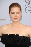 Amy Adams Photo - LOS ANGELES - JAN 27  Amy Adams at the 25th Annual Screen Actors Guild Awards at the Shrine Auditorium on January 27 2019 in Los Angeles CA