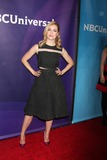 Amanda Schull Photo 3