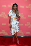 Merrin Dungey Photo - LOS ANGELES - APR 14  Merrin Dungey at the Tiny Beautiful Things Opening Night at the Pasadena Playhouse on April 14 2019 in Pasadena CA