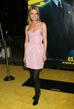 Anita Briem Photo - Photo by REWestcomstarmaxinccom20093209Anita Briem at the premiere of Watchmen(Hollywood CA)