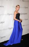 Diane Kruger Photo 3