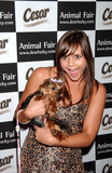 ALEX CHANDO Photo - Actress Alex Chando arrives at Animal Fair Magazines 8th Annual Paws for Style held at Arena