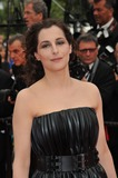 Amira Casar Photo - Amira Casar at the gala premiere of The Search at the 67th Festival de CannesMay 21 2014  Cannes FrancePicture Paul Smith  Featureflash