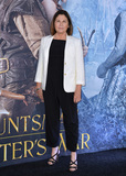 Colleen Atwood Photo - LOS ANGELES CA April 11 2016 Costume designer Colleen Atwood at the US premiere of The Huntsman Winters War at the Regency Village Theatre WestwoodPicture Paul Smith  Featureflash