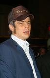Benicio Del Toro Photo 3
