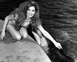 Edy Williams Photo - Edy Williams at Marineland of the Pacific So California Bob NobleGlobe Photos Inc