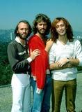 Bee Gees Photo - Bee Gees (mauricebarryrobin) Photobob ShermanGlobe Photos Inc 1979 Mauricegibbretro