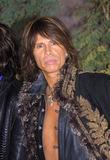 Steven Tyler Photo 3