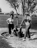 Ava Gardner Photo 3