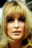 Sharon Tate Photo - Sharon Tate Photo by Orlando Globe Photosinc